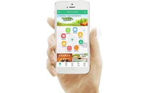 现代农业网上交易平台——农产品电子商务系统
