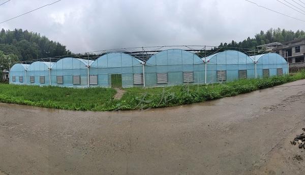 江西省铜鼓县——古桥村种植基地智能温室大棚系统的成功建立