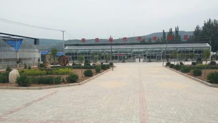 甘肃平凉—现代农业园区智能综合监控系统
