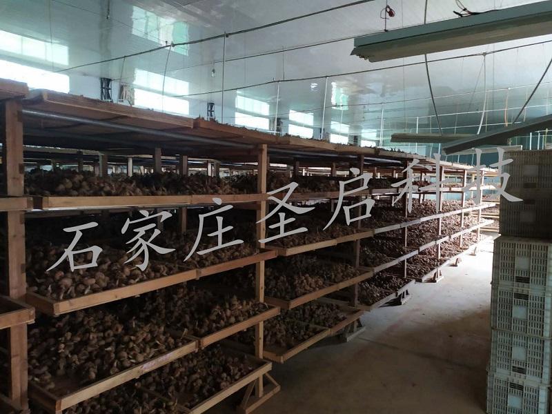 贵州省羊桥乡——圣启智慧温室监控系统在祝发西红花农民专业合作社的全面应用