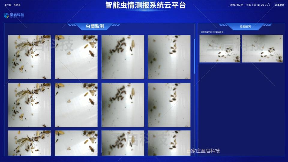 智能虫情测报系统云平台